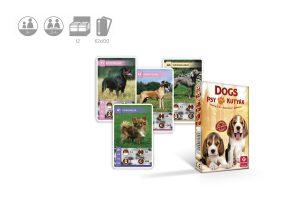 dogs, gra cartamundi, gry dla dzieci ze zwierzętami, gry dla miłośników psow
