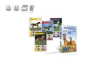konie, gry dla miłośników koni, cartamundi horses