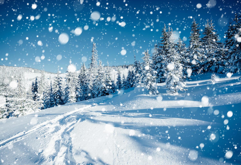 Gry planszowe w klimatach zimowych – dla małych i dużych miłośników planszówek